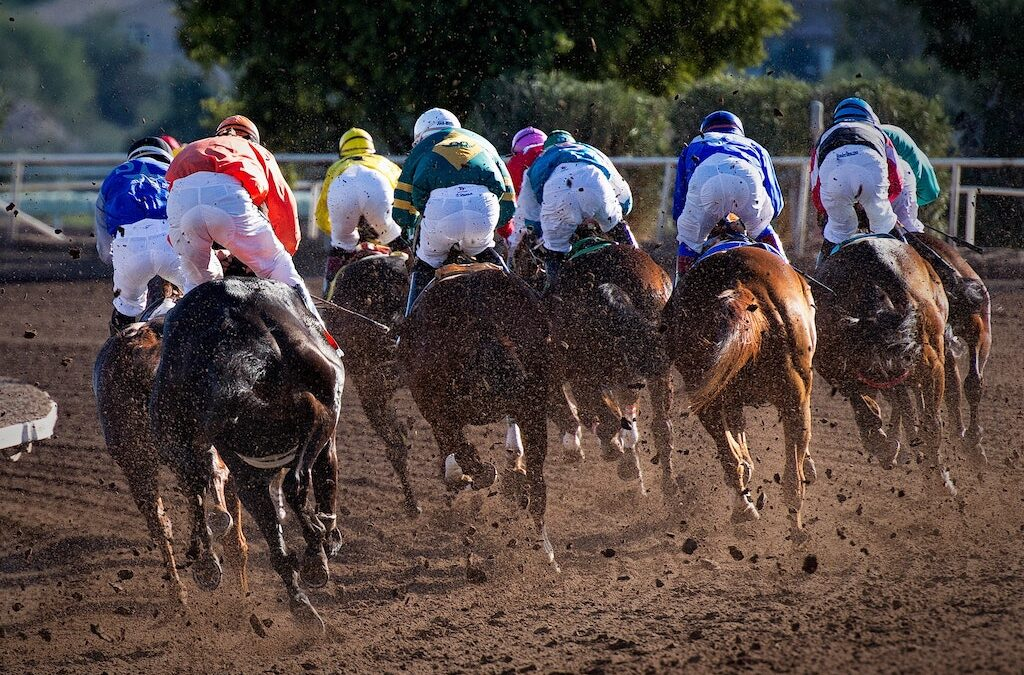 What to Look for When Making Your Selection in Horse Racing